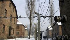 Šest bachařek z Osvětimi chtějí soudit v Německu. Nejmladší je 87 let