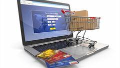 V pondělí dosáhnou vánoční nákupy po internetu vrcholu. Obrat českých e-shopů se přiblíží miliardě