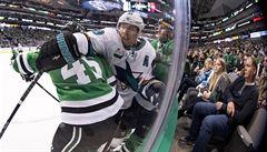 Polák s Faksou přispěli v NHL k výhře Dallasu, Hanzal se vrátil zpátky