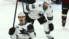 Radil se v NHL trefil poprvé, skórovali další čtyři Češi