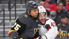 VIDEO: Zlý muž NHL dostal za vyučenou. Reaves poslal Wilsona do říše snů