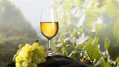 Bio alkohol? Návrat k přírodě a žádné pesticidy, říká barman