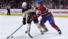 NHL: Kaše a Krejčí skórovali, Pastrňák dvakrát asistoval