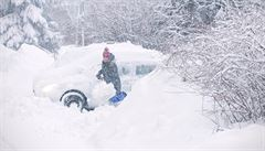 Sníh láme stromy a větve, ty zastavily provoz na některých železnicích. Bez proudu je asi 11 000 míst