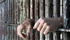 Stasi obchodovala s krví vězňů. K odběrům je nutila násilím