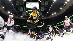 Krejčí s Pastrňákem v NHL skórovali, trefili se i Chytil a Palát
