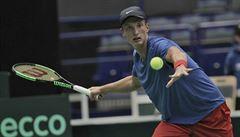 Čeští tenisté padli s Holandskem. Mladíček Lehečka statečně vzdoroval Haasemu