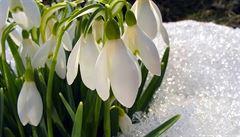 Teplo do poloviny března. Nadprůměrně teplé počasí bude pokračovat, má být ale více srážek