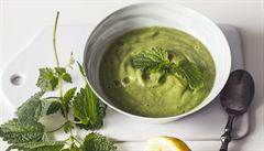 Kopřivy v kuchyni. Připravte z nich jarní polévku