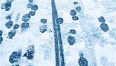 Zima se ještě nevzdává. Příští týden bude přes den maximálně kolem nuly, pak se oteplí