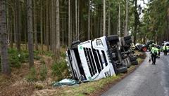 Nehodu kamionu na Benešovsku nepřežilo 43 prasat. Zvířata se rozutekla do lesa