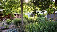 Zahrady pro období suchých let? Jednoznačně bez trávníku
