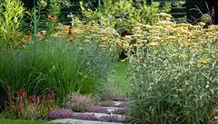 Na zahradě pracujte s tím, co najdete v okolí, radí odborník