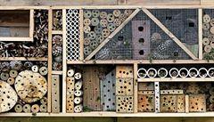 O brouky bychom se měli starat. Jak postavit hmyzí noclehárnu?