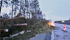 D1 je opět průjezdná. Dálnice na Vysočině byla kvůli spadaným stromům zavřená 14 hodin