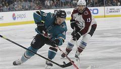 Zranění přišlo v nejlepší možnou dobu. Play-off NHL bude pro hráče psychicky náročné, říká Tomáš Hertl