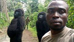 Gorily zapózovaly na selfie se svými zachránci. Imitovaly postoj lidí