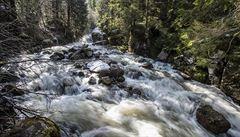 Celodenní déšť zvedá hladiny řek. Labe dosáhlo prvního povodňového stupně, na východě hrozí i druhý