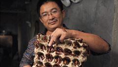 'Lidé si neumějí představit, jak je to dobré,' vysvětluje chovatel a spolkne živého švába