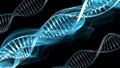 Profesor analyzoval svou DNA a zjistil, že může umřít na infarkt