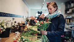 Růže, které neletěly přes půl světa. V Česku vznikají novodobí květinoví farmáři