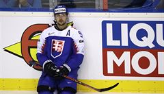 Slováci se vztekají. 'Je smutné, že nás rozhodčí v posledních zápasech poškodili,' říká Buc
