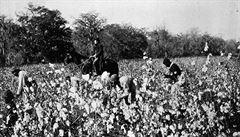 Dřív půda a mezek, teď jsou ve hře biliony dolarů. Demokraté chtějí odškodnit Afroameričany za otroctví