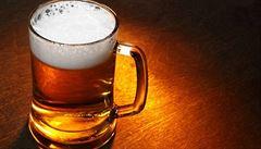 'Nikdo z toho pivo ještě nevařil.' Vědci z Mendelovy univerzity uvařili netradiční pivní speciál
