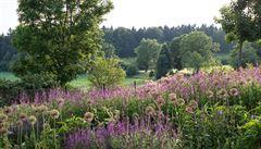 Jak na krásnou zahradu? Sázejte obyčejné místní rostliny