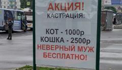 Reklama v Petrohradě nabízí bezplatnou kastraci záletných mužů. Některým lidem přijde pobuřující