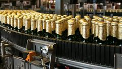 České pivovary opět měly rekordní výstav. Do budoucna ale s optimismem nehledíme, říká svaz