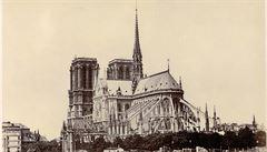 Skleník. Park. Luxusní byt? Jak probíhá spor o Notre-Dame