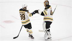 NHL: Boston porazil St. Louis a vynutil si rozhodující sedmý zápas