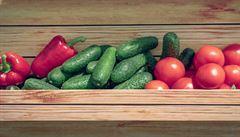 Velká voňavá trojka. Rajčata, papriky a okurky nemají v salátu chybět