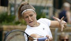Muchová postupem do třetího kola Wimbledonu vyrovnala své maximum, dál jde i Plíšková a Veselý