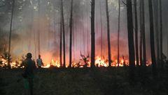 Hodonínsko pustošil obří požár, hasiči jej dostali pod kontrolu