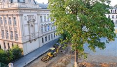 Zdravý javor vs. hřiště pro děti: Praha 2 zaplatila PR agentuře za diskusi s občany 28 tisíc korun