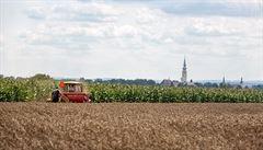 Kvůli suchu může v budoucnu klesnout HDP Česka o 1,6 procenta, tvrdí vědci z České zemědělské univerzity