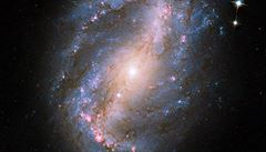 Vědci objevili 39 dosud neznámých galaxií. 'Jejich odhalení jde úplně proti všemu, co jsme dosud věděli'