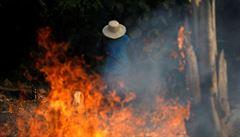 Brazílie čelí kritice kvůli požárům v Amazonii. EU zváží zákaz dovozu brazilského hovězího