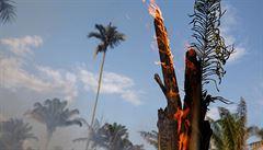 Brazílie odmítne peníze od G7 na boj s požáry. Raději zalesňujte Evropu, vzkázal úřad prezidenta