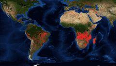 Nehoří jen Amazonie. Angola a Kongo se potýkají s trojnásobkem požárů