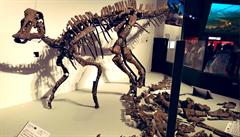 'Japonský ještěří bůh.' Asijští paleontologové díky téměř kompletní kostře objevili nový druh dinosaura
