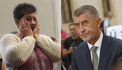 Babiš se má omluvit za výrok o zaplacených demonstrantech, řekl soud. Odvolám se, vzkázal premiér