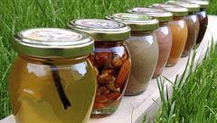 Včelstva v sázce. 'Ohrožují je mnozí eko a bio hobby včelaři, kteří se učí na YouTube'