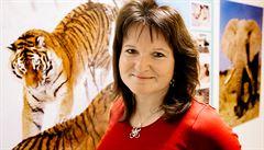 Majstrštyk v Ženevě. Česko bude zkoumat DNA tygrů z celého světa