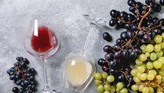 Burčák je jeden z nejzdravějších nápojů. Je ale velmi obtížné se jím opít, říká sommelier
