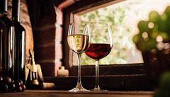 V severských zemích se díky oteplování zvyšuje produkce vína