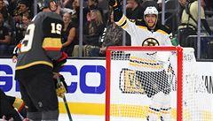 Pastrňák odstartoval gólem obrat Bostonu, skóroval i detroitský Filip Hronek