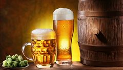 Vietnamci touží po českém pivu. Najímají si sládky i stavitele minipivovarů